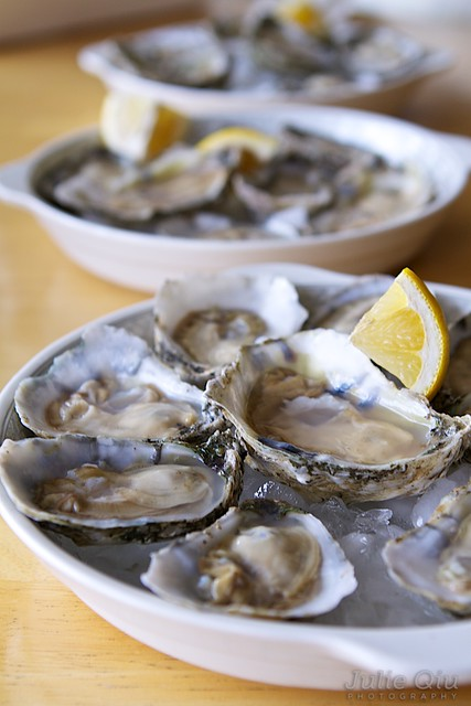 York River Oysters