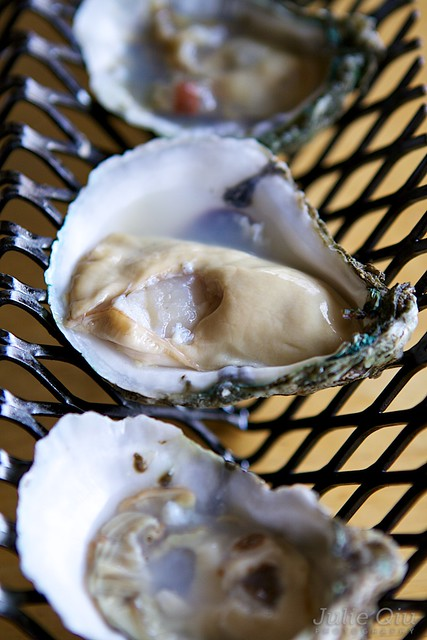 Fatty Oysters